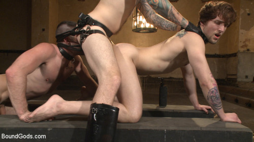 Gay BDSM Bound Gods Live New House Slaves Tested by the Kink Olympics