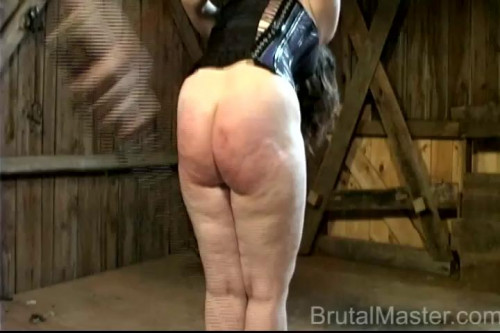 bdsm Ariel - Strung Up Beating