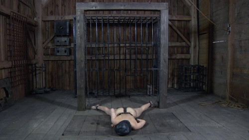 bdsm Marina Worthless Cunt Part 2 - BDSM, Humiliation, Torture