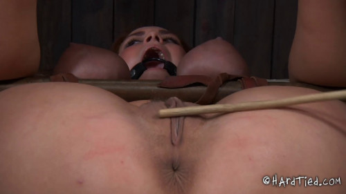 bdsm Trapped Part Two Ashley Graham