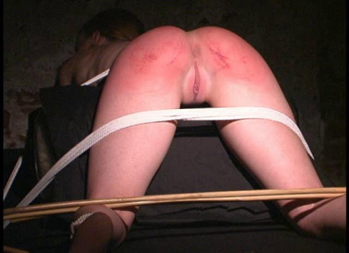 bdsm The Best of Cane