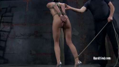 bdsm Pity Fuck Part One - Elise Graves