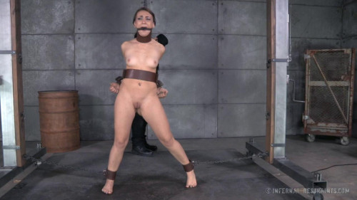 bdsm Mandy Muse Freshly Chained high - BDSM, Humiliation, Torture