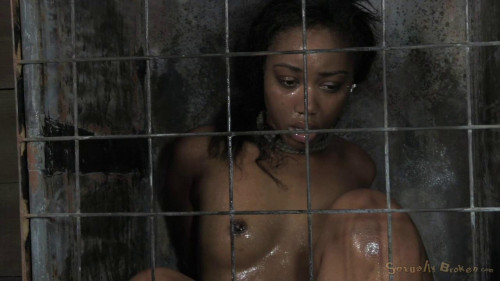 bdsm Chanell Heart fucked hard and put away wet