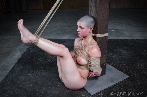 bdsm HT - March 18, 2015 - AbbyBot - Abigail Dupree, OT - HD
