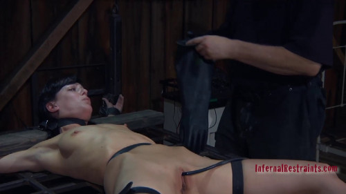 DOWNLOAD from FILESMONSTER: bdsm Curious Elise 2 E Graves And Pd