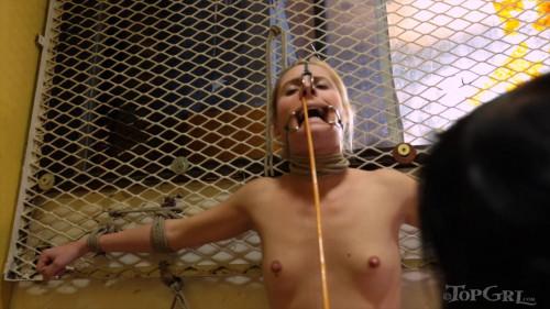 Breaking Pointe 1 BDSM