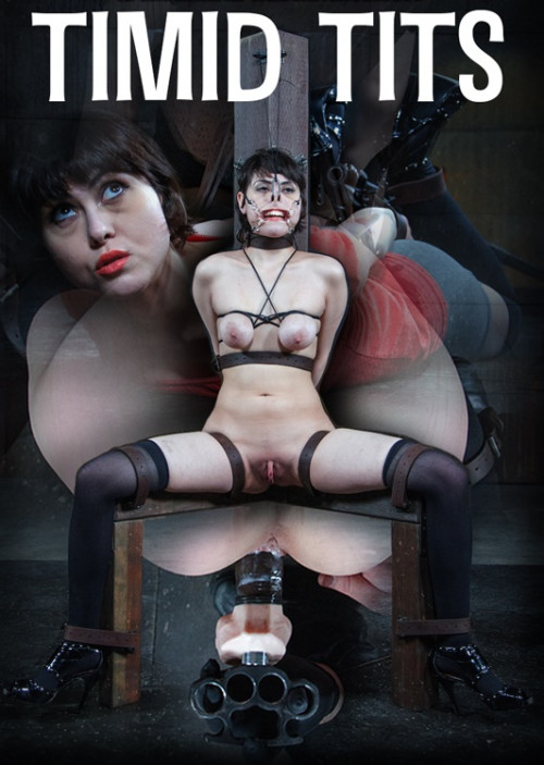 Timid Tits – Audrey Noir