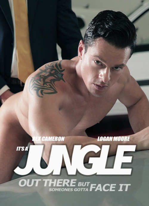 Jungle - To The Wolves Gay Clips