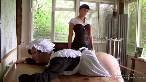 DOWNLOAD from FILESMONSTER: bdsm The Whipped Maid