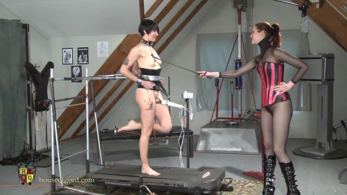 HouseofGord Videos 2013-2014, Part 1