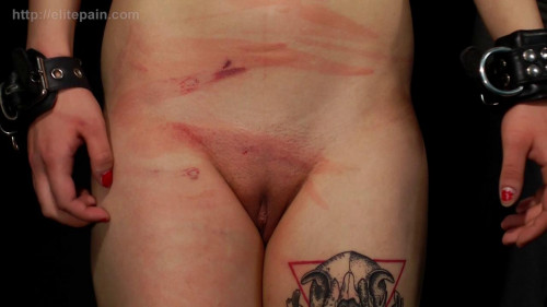 DOWNLOAD from FILESMONSTER: bdsm ElitePain Life in the Elite Club