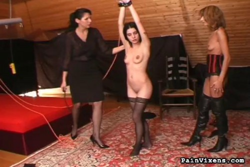 DOWNLOAD from FILESMONSTER: bdsm PainVixens Training the bitches