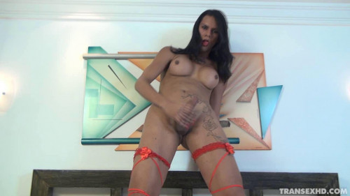 DOWNLOAD from FILESMONSTER: transsexual A Travesti Nina Lins Mostrando Seu Cacete (06 May 2015)