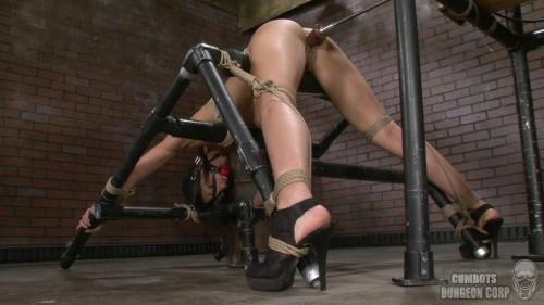 Loving Lyla Pt 2 (2013) Sex Machines