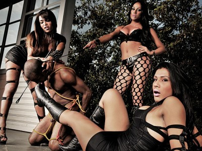 DOWNLOAD from FILESMONSTER: transsexual Trifecta of Shemale Punishment