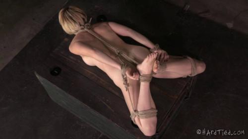 Kardiac Bonds (Kay Kardia) BDSM
