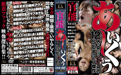 Henry Tsukamoto Functional Pornography Oh Iku To 12 Women