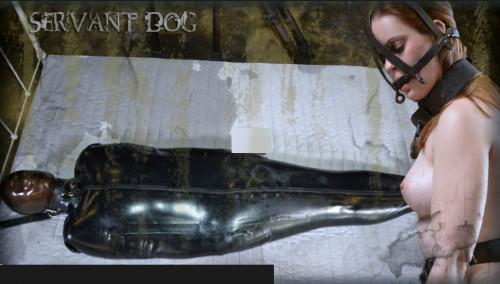 DOWNLOAD from FILESMONSTER:  BDSM Extreme Torture  Servant Dog   Hazel Hypnotic