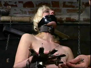 Insex - Paper Cow (Live Feed From December 1, 2001) - Cowgirl, 1201 BDSM