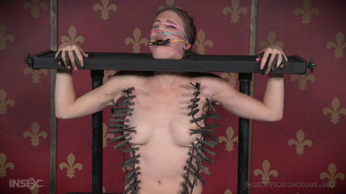 Insatiable Ass Part 1 BDSM