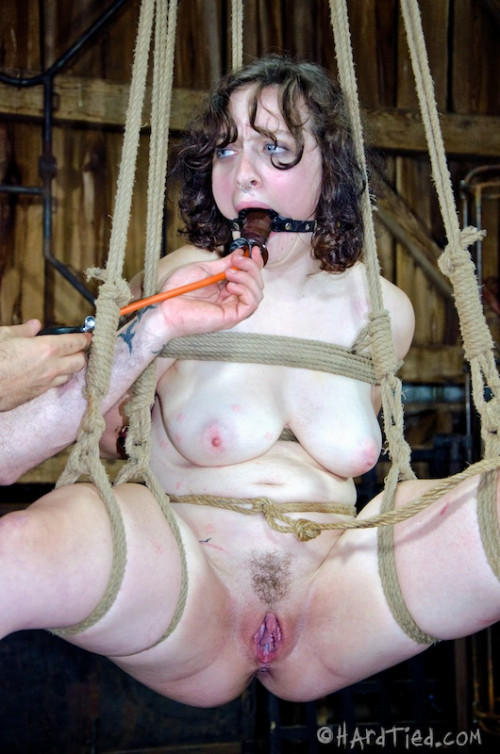 DOWNLOAD from FILESMONSTER:  BDSM Extreme Torture  HT   Hobble Skirt   Dixon Mason