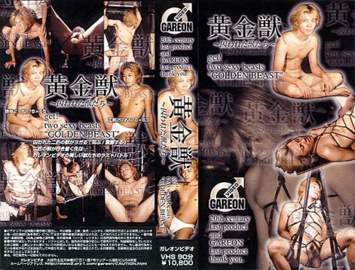 Gayce Avenue - Captive Animal Asian Gays