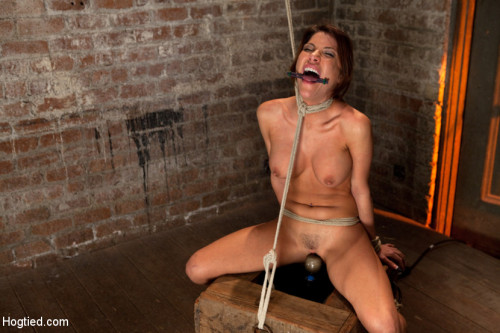 DOWNLOAD from FILESMONSTER: bdsm 1 of Porns Hottest Bodies steps into the dark world of BDSM. Someone stepped into the wrong basement