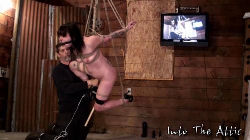 Bijou BDSM (2010)