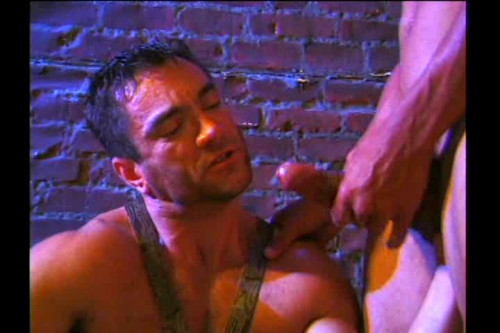 DOWNLOAD from FILESMONSTER: gay full length films The Pharaohs Curse