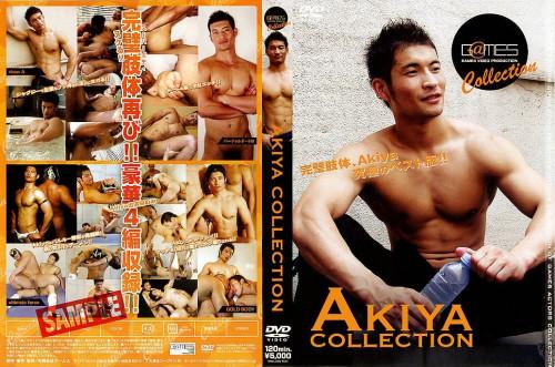 Akiya Collection Asian Gays