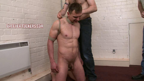 DOWNLOAD from FILESMONSTER: gay bdsm Tied in his suit, clothes cut to shreds
