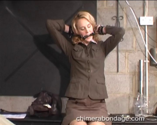Welcome Miss Anderssen... (2014) BDSM