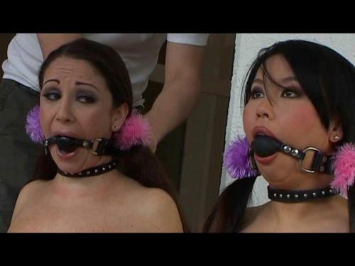 Petgirls - Her life as a pet 8 - Jewell Marceau - Tigerr Benson BDSM