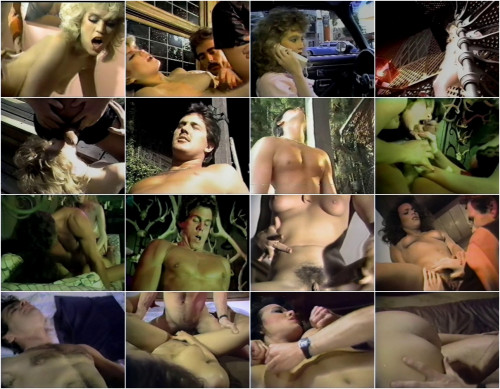 DOWNLOAD from FILESMONSTER: retro Hollywood Heartbreakers