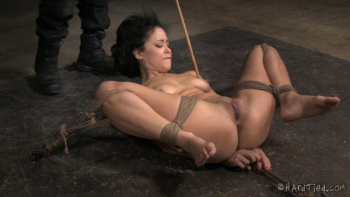 The New Girl Part Two | Mia Austin | Jack Hammer BDSM