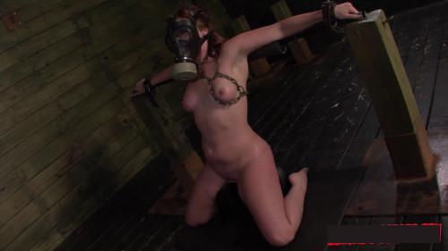 SexualDisgrace Videos, Part 3