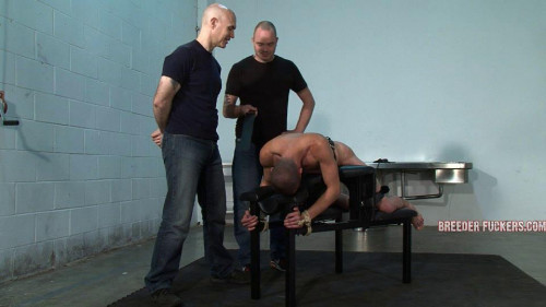 DOWNLOAD from FILESMONSTER: gay bdsm Strapped to a bench, arse flogged, relentlessly spanked