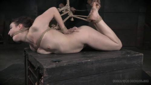 DOWNLOAD from FILESMONSTER: bdsm Bondage Monkey Part 2(Apr 2015)