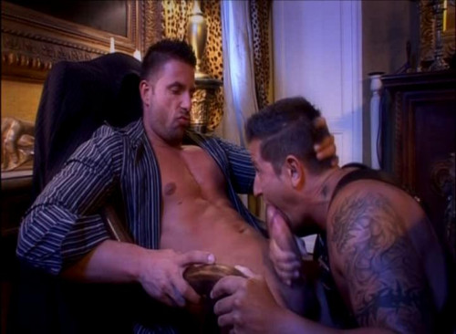 DOWNLOAD from FILESMONSTER: gay full length films Tough Types