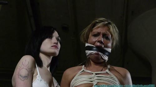 Dr. Cupcakes Gets a New Assistant - Part 1 BDSM