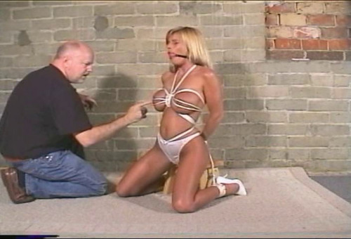 DOWNLOAD from FILESMONSTER: bdsm Breast Control 2 Brandy Krystal Summers