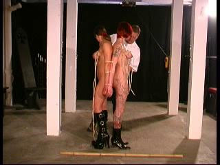 DOWNLOAD from FILESMONSTER: bdsm As the title subtly implies this is all about tits and doing mean things to them