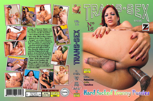 Trans-Sex 16 - Hard Fucked Tranny Pussies SheMale