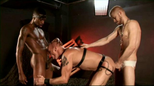 DOWNLOAD from FILESMONSTER: gays Bareback Gut Fuckers