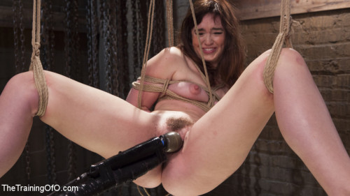 DOWNLOAD from FILESMONSTER: bdsm Jodi Taylor and the Slave Trainer