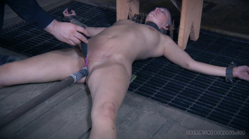 DOWNLOAD from FILESMONSTER:  BDSM Extreme Torture  The Extended Feed of Miss Dupree Part 3