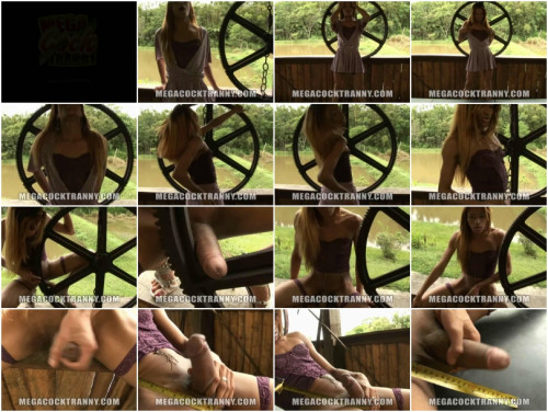 DOWNLOAD from FILESMONSTER: transsexual Monster Cock Explosion Outdoors