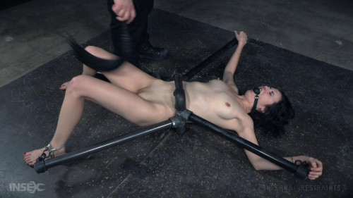 IR Feb 19, 2016 - Rita Rollins high BDSM