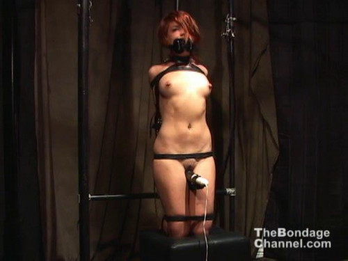 The Bondage Channel Orgasms Vol 78